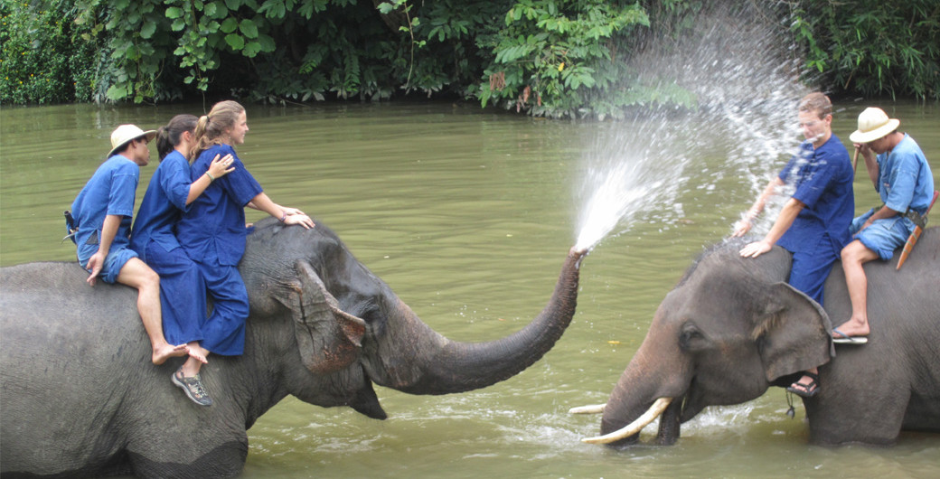 Mahout-Elephant-Water-Spray-Cover-Image.jpg