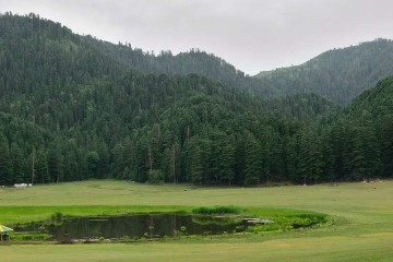 green-meadows-of-himacha